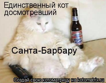 Котоматрица: Единственный кот досмотревший  Санта-Барбару