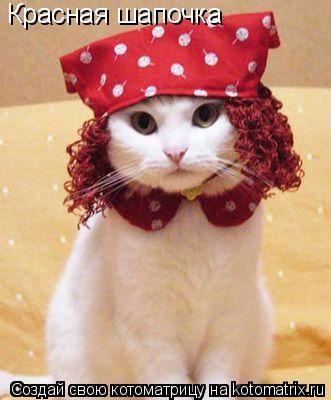 Котоматрица: Красная шапочка