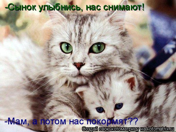Котоматрица: -Сынок улыбнись, нас снимают! -Мам, а потом нас покормят??