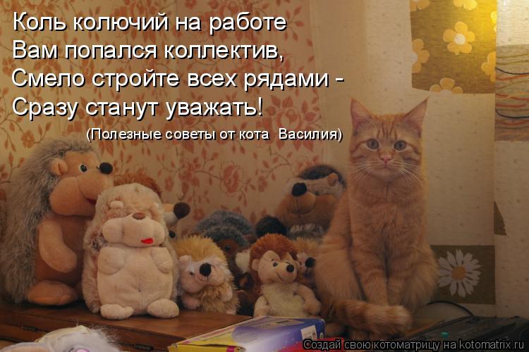 Котоматрица: Коль колючий на работе Вам попался коллектив, Смело стройте всех рядами - Сразу станут уважать! (Полезные советы от кота  Василия)