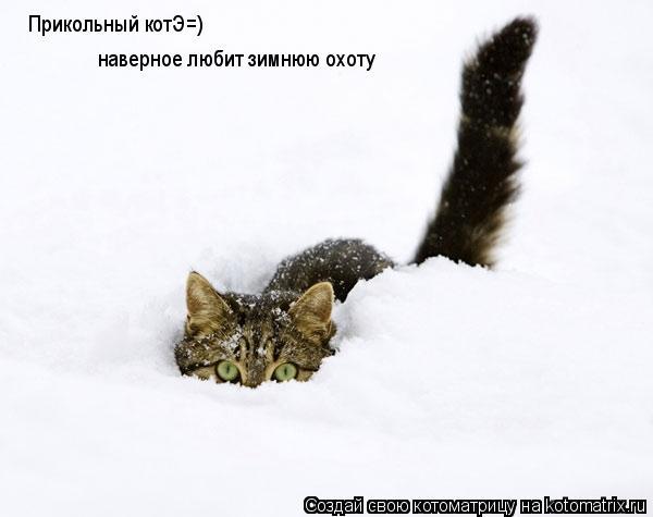 Котоматрица: Прикольный котЭ=) наверное любит зимнюю охоту