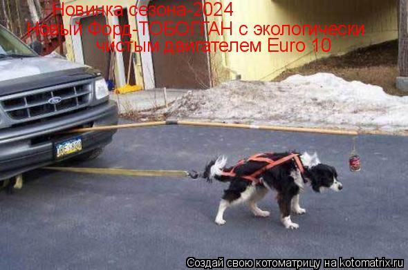 Котоматрица: чистым двигателем Euro 10 Новый Форд-ТОБОГГАН с экологически Новинка сезона-2024