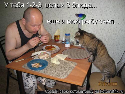 Котоматрица: У тебя 1-2-3, целых 3 блюда... еще и мою рыбу съел...