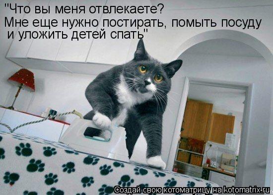 """Котоматрица: """"Что вы меня отвлекаете? Мне еще нужно постирать, помыть посуду  и уложить детей спать"""""""