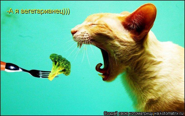 Котоматрица: -А я вегетарианец)))