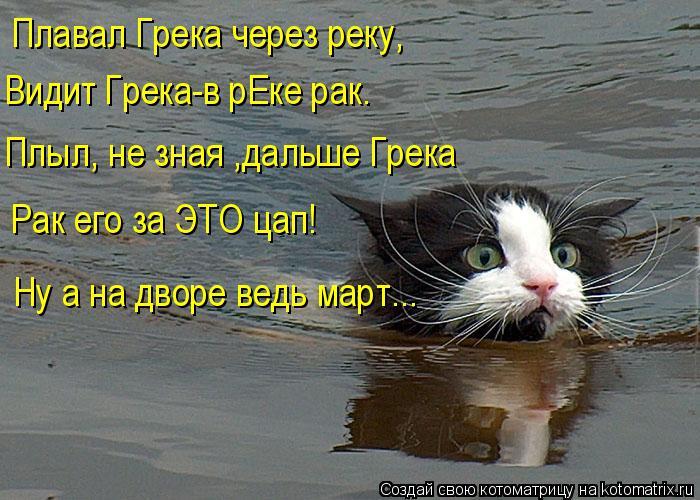 Котоматрица: Плавал Грека через реку, Видит Грека-в рЕке рак. Плыл, не зная ,дальше Грека Рак его за ЭТО цап! Ну а на дворе ведь март...