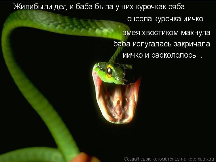 Котоматрица: Жилибыли дед и баба была у них курочкак ряба снесла курочка иичко змея хвостиком махнула баба испугалась закричала иичко и раскололось...
