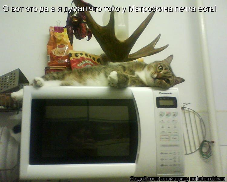 Котоматрица: О вот это да а я думал что токо у Матроскина печка есть!