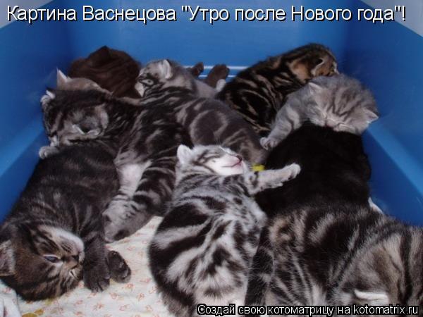 "Котоматрица: Картина Васнецова ""Утро после Нового года""!"