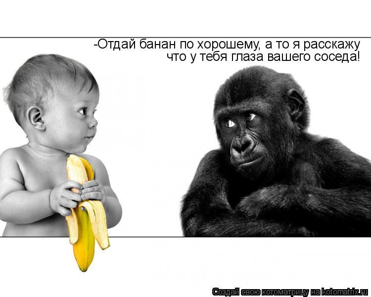 Котоматрица: -Отдай банан по хорошему, а то я расскажу что у тебя глаза вашего соседа!