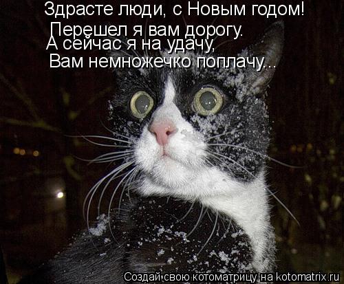 Котоматрица: Здрасте люди, с Новым годом! Перешел я вам дорогу. А сейчас я на удачу, Вам немножечко поплачу...