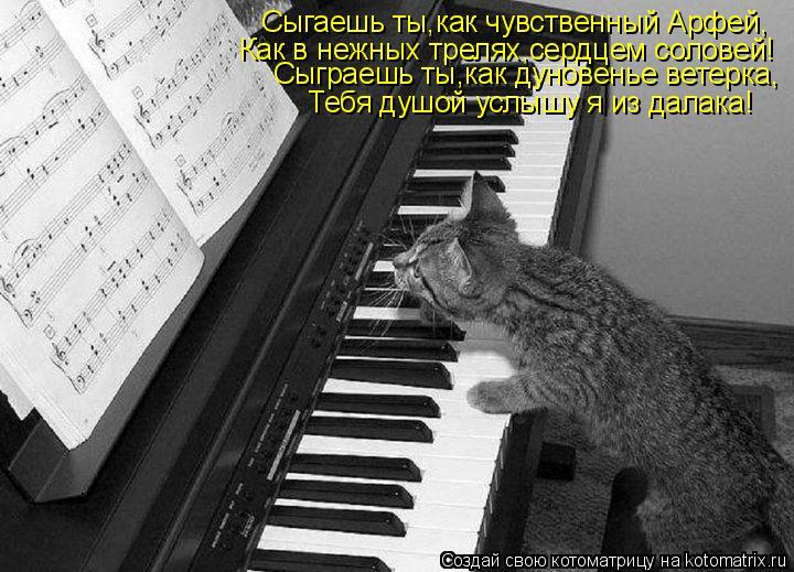 Котоматрица: Сыгаешь ты,как чувственный Арфей, Как в нежных трелях,сердцем соловей! Сыграешь ты,как дуновенье ветерка,  Тебя душой услышу я из далака!