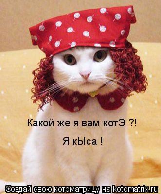 Котоматрица: Какой же я вам котЭ ?! Я кЫса !