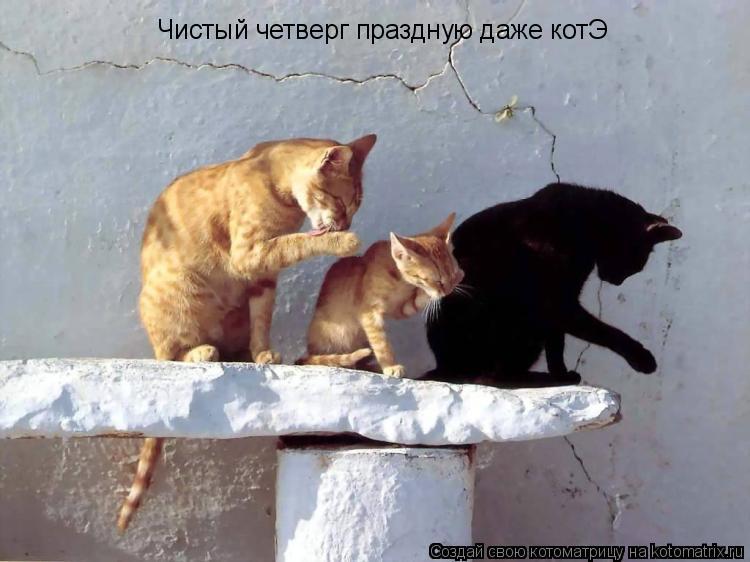Котоматрица: Чистый четверг праздную даже котЭ
