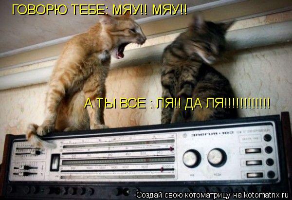 Котоматрица: ГОВОРЮ ТЕБЕ: МЯУ!! МЯУ!!   А ТЫ ВСЕ : ЛЯ!! ДА ЛЯ!!!!!!!!!!!!