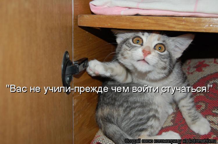 """Котоматрица: """"Вас не учили-прежде чем войти стучаться!"""" ,"""