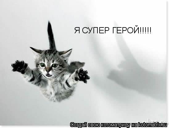 Котоматрица: Я СУПЕР ГЕРОЙ!!!!!