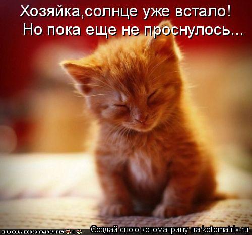 http://kotomatrix.ru/images/lolz/2011/05/15/908563.jpg