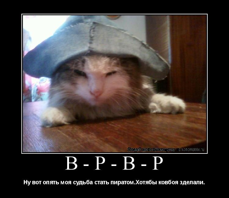 Котоматрица: в-р-в-р Ну вот опять моя судьба стать пиратом.Хотябы ковбоя зделали.