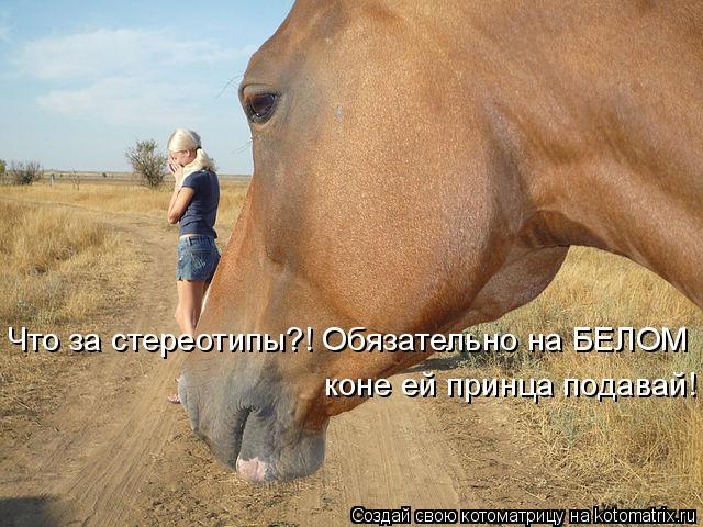 Котоматрица: Что за стереотипы?! Обязательно на БЕЛОМ  коне ей принца подавай!