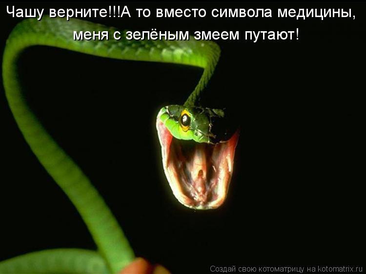 http://kotomatrix.ru/images/lolz/2011/05/16/908637.jpg