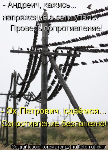 Котоматрица: - Андреич, кажись... напряжение в сети упало! Проверь сопротивление! - Эх,Петрович, сдаёмся... Сопротивление бесполезно!