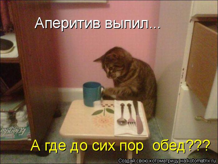 Котоматрица: А где до сих пор  обед??? Аперитив выпил...