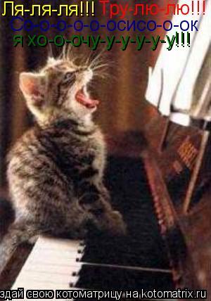 Котоматрица: Ля-ля-ля!!! Тру-лю-лю!!! Со-о-о-о-о-осисо-о-ок я хо-о-очу-у-у-у-у-у!!!