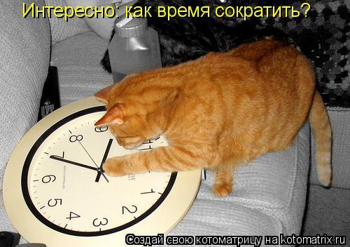 Котоматрица: Интересно: как время сократить?