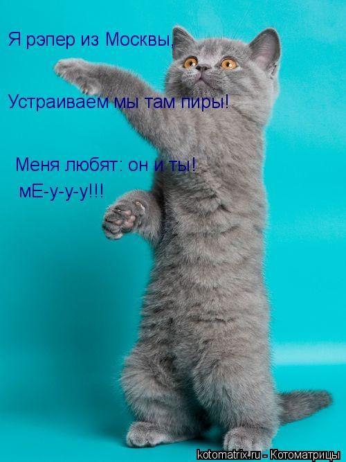 Котоматрица: Я рэпер из Москвы, Устраиваем мы там пиры! Меня любят: он и ты! мЕ-у-у-у!!!