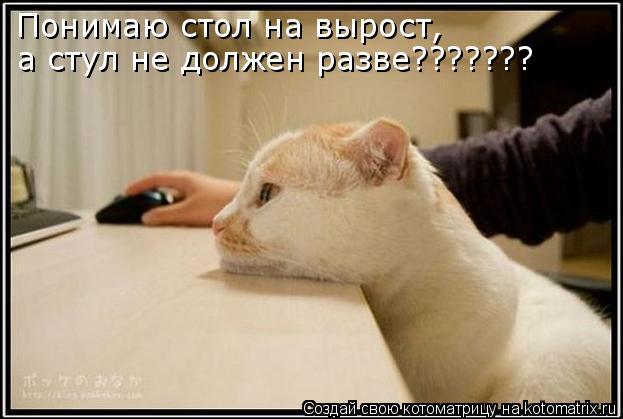 Котоматрица: Понимаю стол на вырост, а стул не должен разве???????