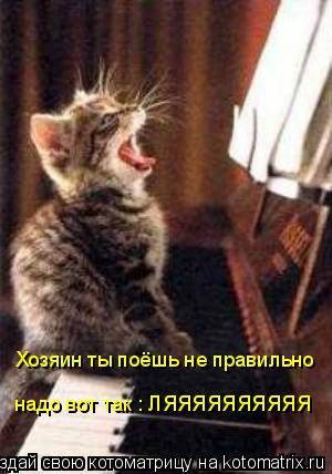 Котоматрица: Хозяин ты поёшь не правильно надо вот так : ЛЯЯЯЯЯЯЯЯЯЯ
