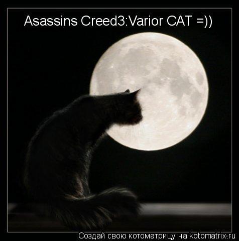 Котоматрица: Asassins Creed3:Varior CAT =)) Asassins Creed3:Varior CAT =))