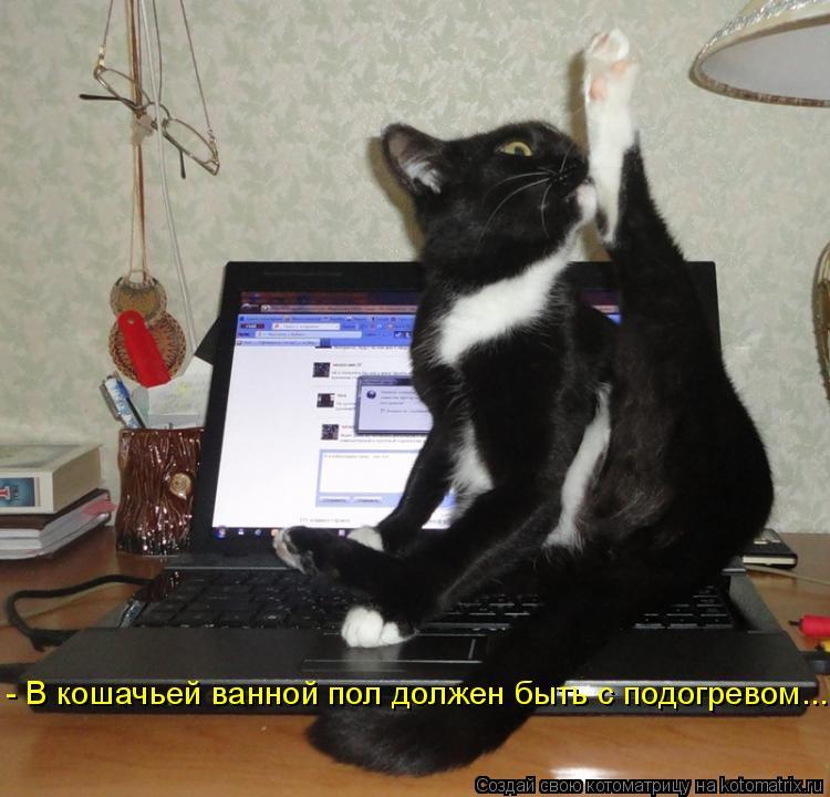 Котоматрица: - В кошачьей ванной пол должен быть с подогревом...