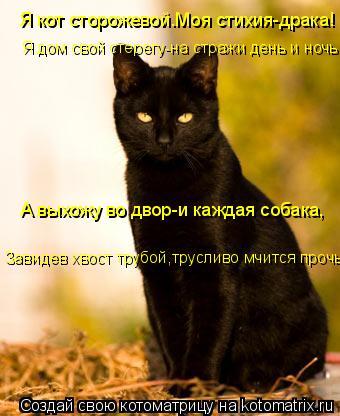 Котоматрица: Я кот сторожевой.Моя стихия-драка!   Я дом свой стерегу-на стражи день и ночь  А выхожу во двор-и каждая собака,   Завидев хвост трубой,труслив