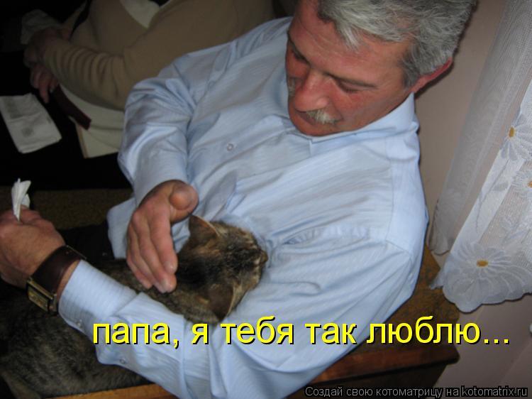 Котоматрица: папа, я тебя так люблю...