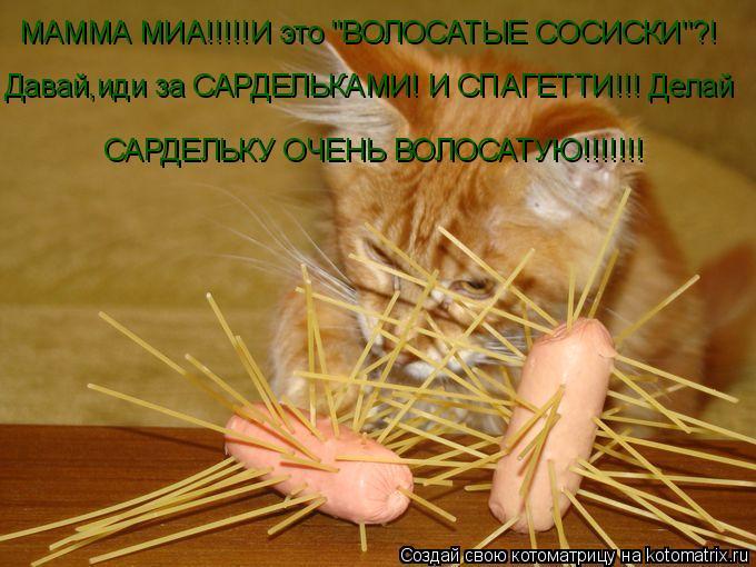"""Котоматрица: МАММА МИА!!!!! И это """"ВОЛОСАТЫЕ СОСИСКИ""""?! Давай,иди за САРДЕЛЬКАМИ! И СПАГЕТТИ!!! Делай САРДЕЛЬКУ ОЧЕНЬ ВОЛОСАТУЮ!!!!!!!"""