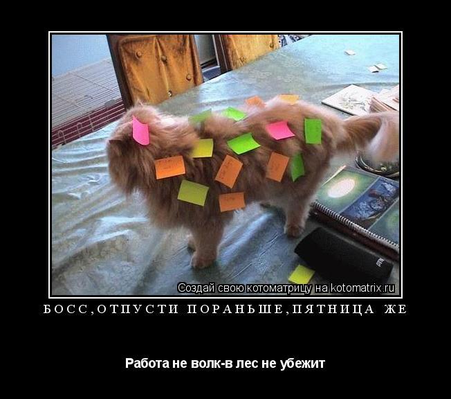 Котоматрица: Босс,отпусти пораньше,пятница же Работа не волк-в лес не убежит