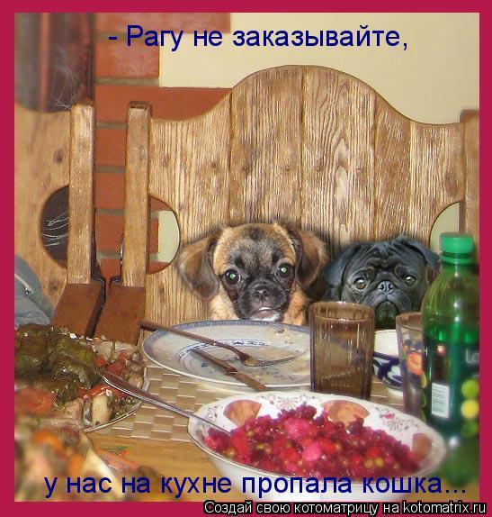 Котоматрица: - Рагу не заказывайте, у нас на кухне пропала кошка...