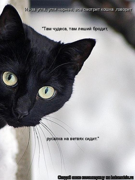 """Котоматрица: Из-за угла, угля чернее, все смотрит кошка ,говорит  """"Там чудеса, там леший бродит, русалка на ветвях сидит."""""""