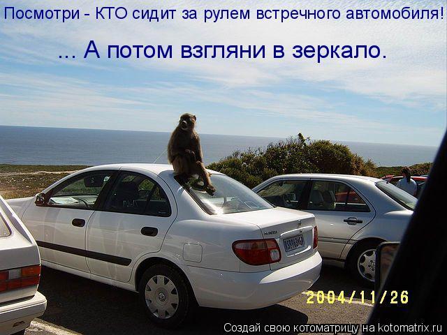 Котоматрица: Посмотри - КТО сидит за рулем встречного автомобиля! ... А потом взгляни в зеркало.