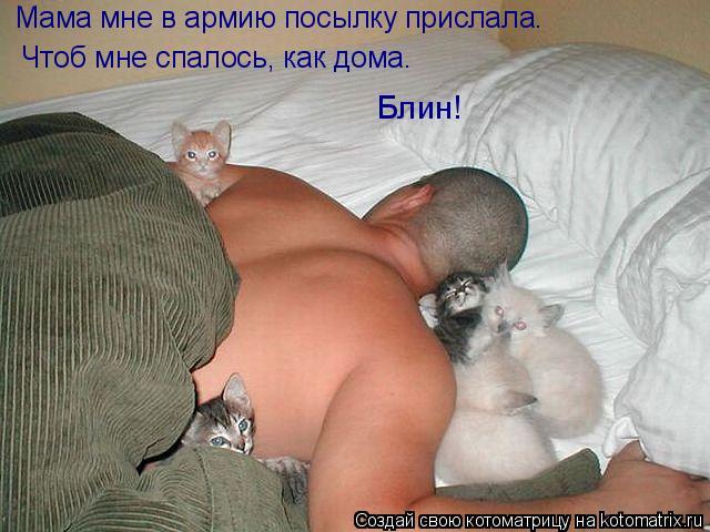 Котоматрица - Мама мне в армию посылку прислала. Чтоб мне спалось, как дома. Блин!