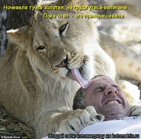 Котоматрица: Ночевала тучка золотая, на груди утеса-великана Пока спал  - его прихорашивала