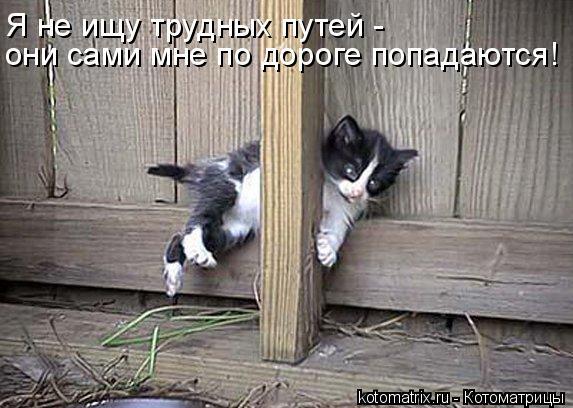 http://kotomatrix.ru/images/lolz/2011/05/17/909678.jpg