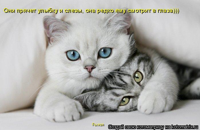 Котоматрица: Они прячет улыбку и слезы, она редко ему смотрит в глаза))) Рыжая