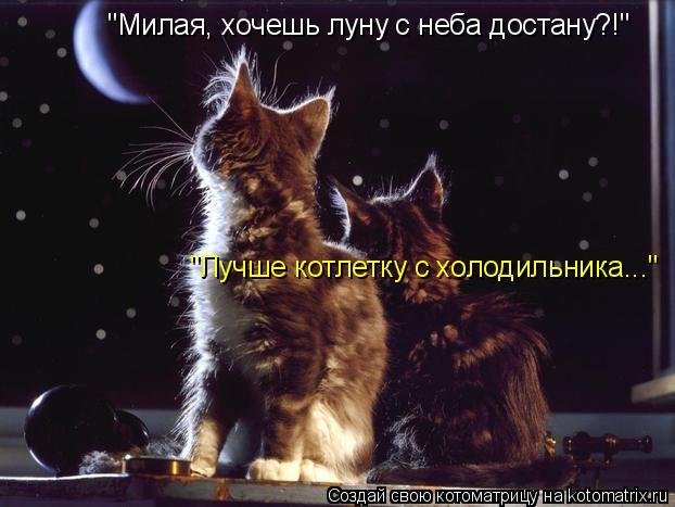 """Котоматрица: """"Милая, хочешь луну с неба достану?!"""" """"Лучше котлетку с холодильника..."""""""