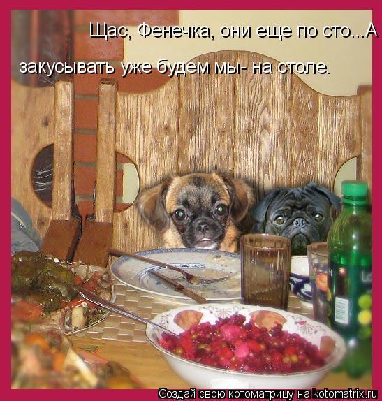 Котоматрица: Щас, Фенечка, они еще по сто...А закусывать уже будем мы- на столе.  закусывать уже будем мы- на столе.
