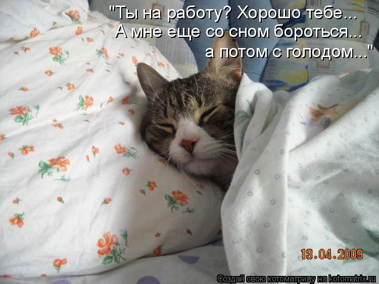 """Котоматрица: """"Ты на работу? Хорошо тебе... А мне еще со сном бороться... а потом с голодом..."""""""