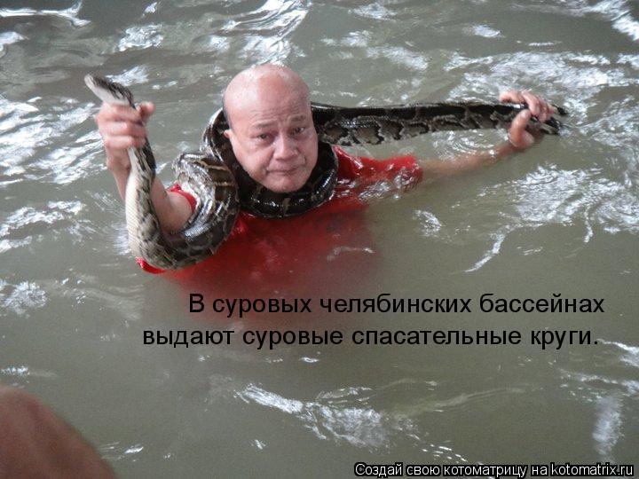 Котоматрица: В суровых челябинских бассейнах выдают суровые спасательные круги.