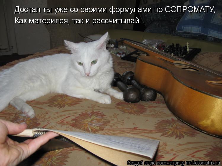 Котоматрица: Достал ты уже со своими формулами по СОПРОМАТУ, Как матерился, так и рассчитывай...